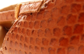 leather-shoe-extravagance2